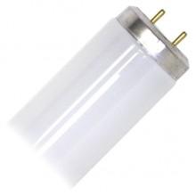 SYL F34CWX 34 Watt Bi Pin Super Saver 48 Inch Fluorescent Bulbs (30 Per Case) - Per Each