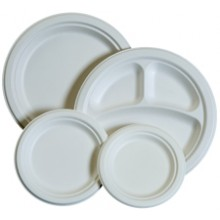 PRWP L1010 Inch Earth Friendly Heavy Sugarcane Fiber Plates 500 Per Case